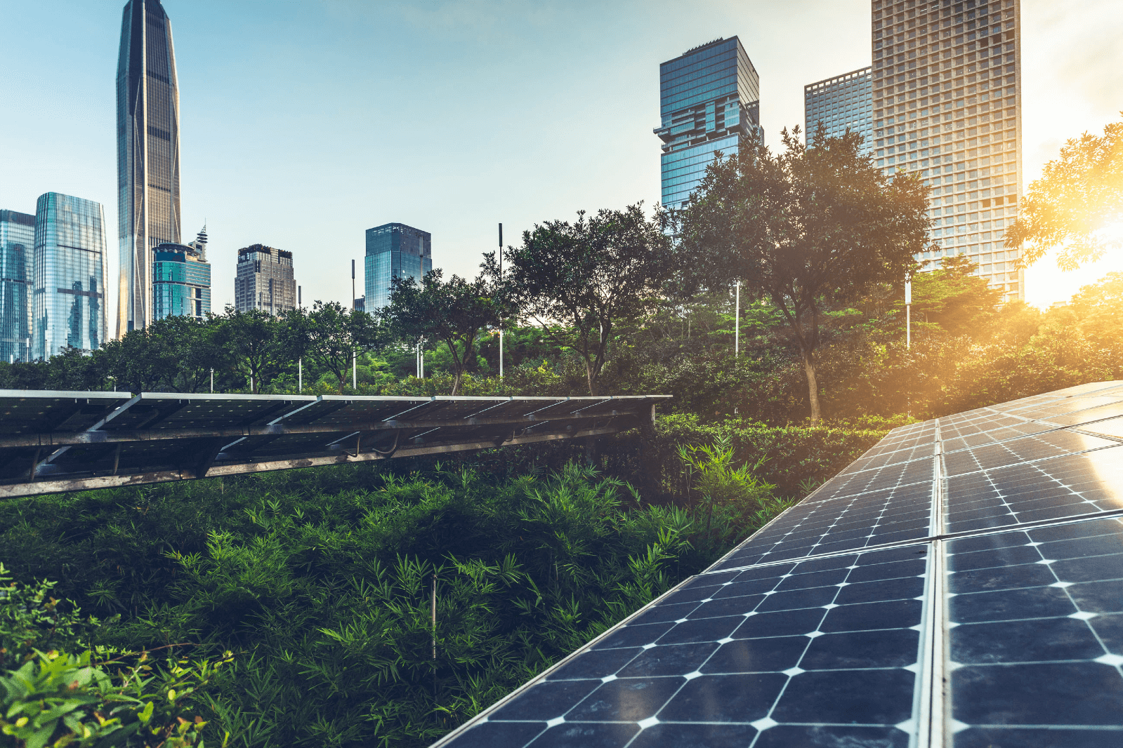 Photo of unknown metropolitan city's skyline, trees, and solar panels during sunset